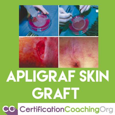 apligraf skin graft
