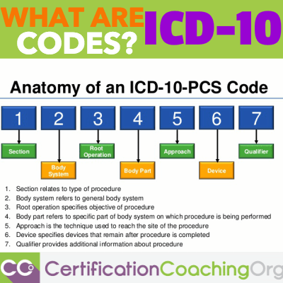 What Are ICD 10 Codes & How Do ICD 10 Codes Work?