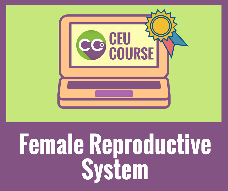 CEU Credits Online Course - Female Reproductive System
