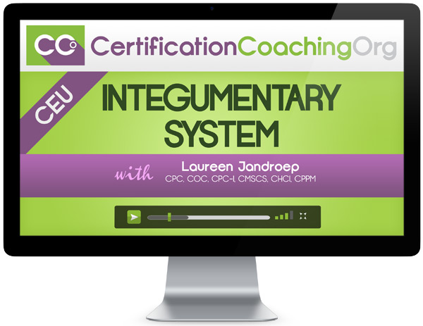 Integumentary System CEU Credit Online Course