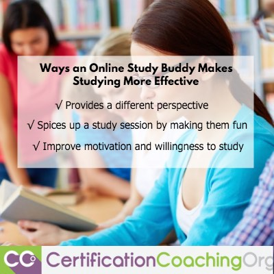 What Makes an Online Study Buddy More Effective for Studying