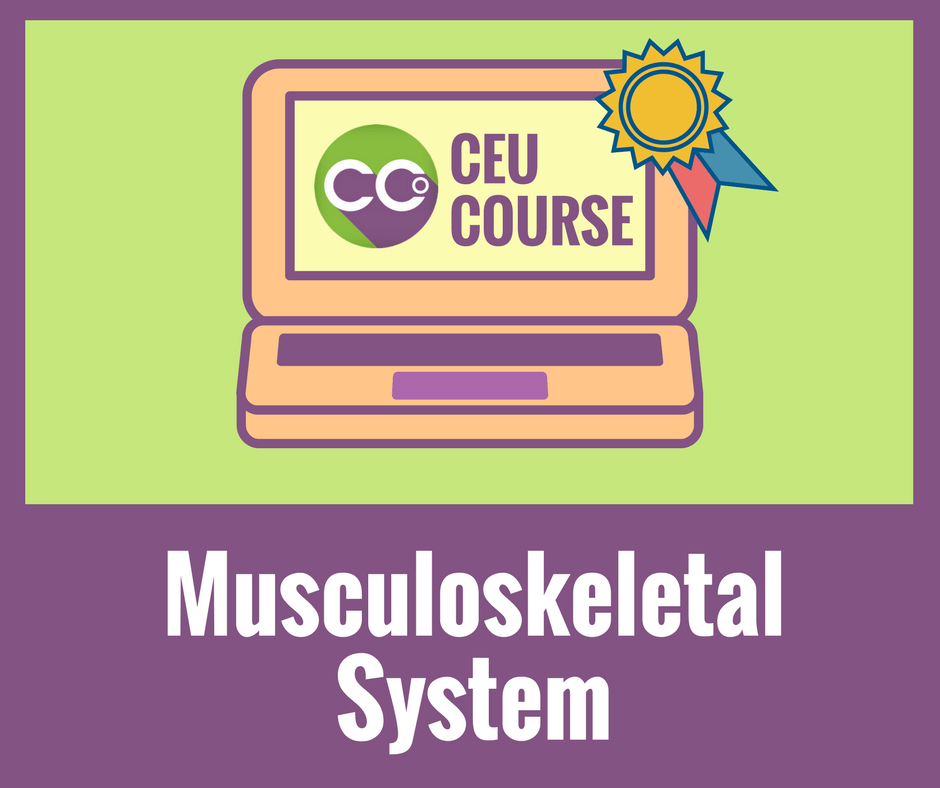 CEU Credits Online Course - Musculoskeletal System