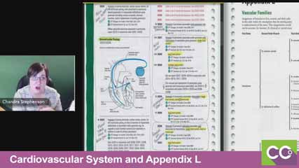 Cardiovascular-System-and-Appendix-L--05