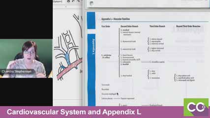 Cardiovascular-System-and-Appendix-L--10
