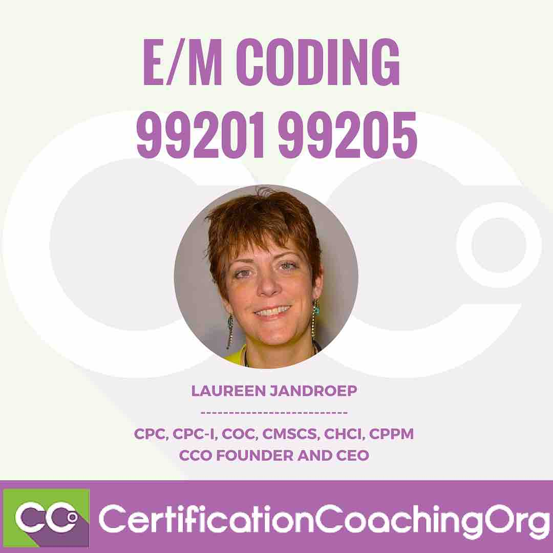 em codes Selection of evaluation and management service codes 1995 e&m guidelines laura sullivan, cpc coordinator corporate compliance auditing & education.
