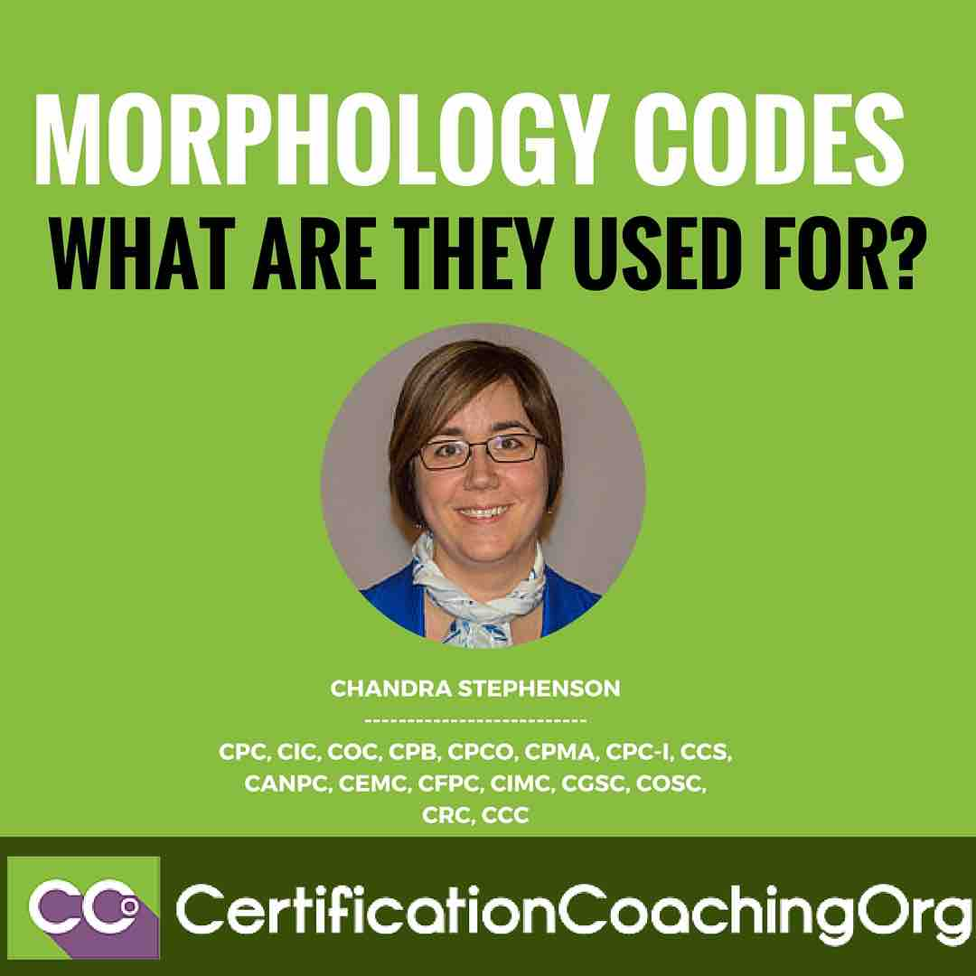 Morphology Codes - What Are They Used For