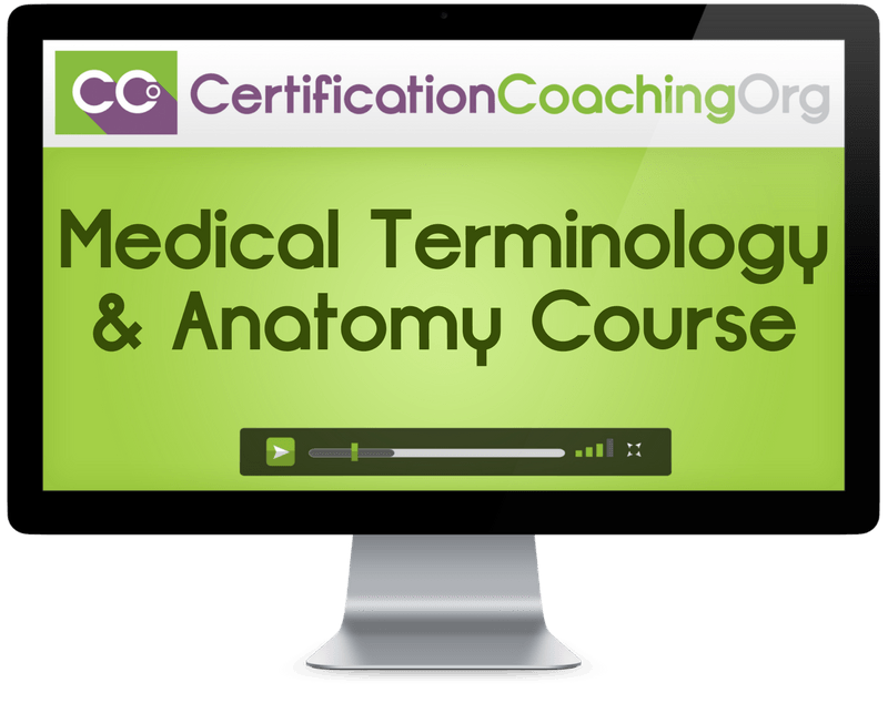 Medical Terminology & Anatomy Course