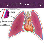 Guide to Lungs and Pleura Coding — Video
