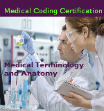 Medical Terminology and Anatomy Course
