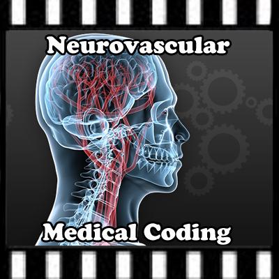 Neurovascular medical coding