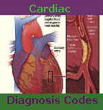 cardiac diagnosis codes 1