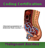 Coding Certification — Malignant Ascites Primary Site