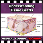 Understanding Tissue Grafts — VIDEO | CCO Medical Coding